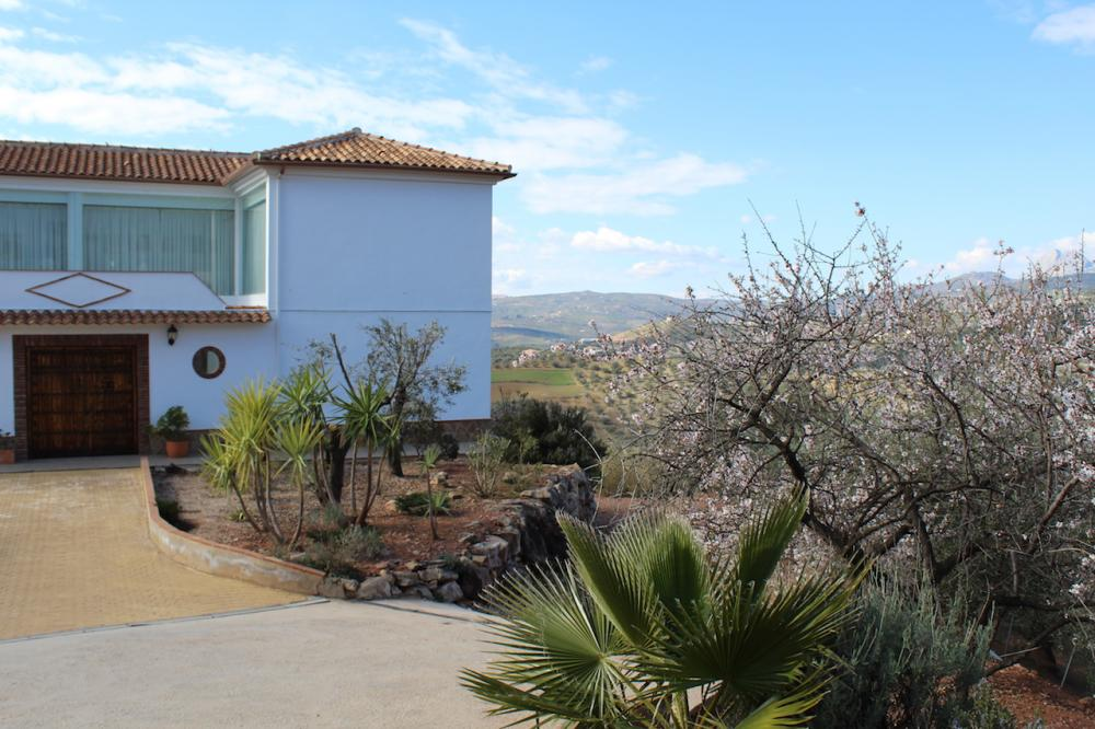 country_house_rio_gordo_malaga_by_bablo_marbella